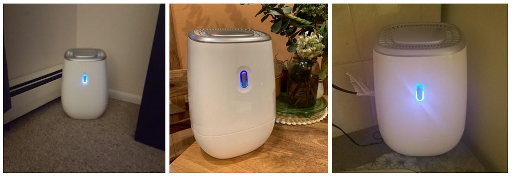 TRUSTECH Dehumidifier Review: Get Rid of High Humidity Levels