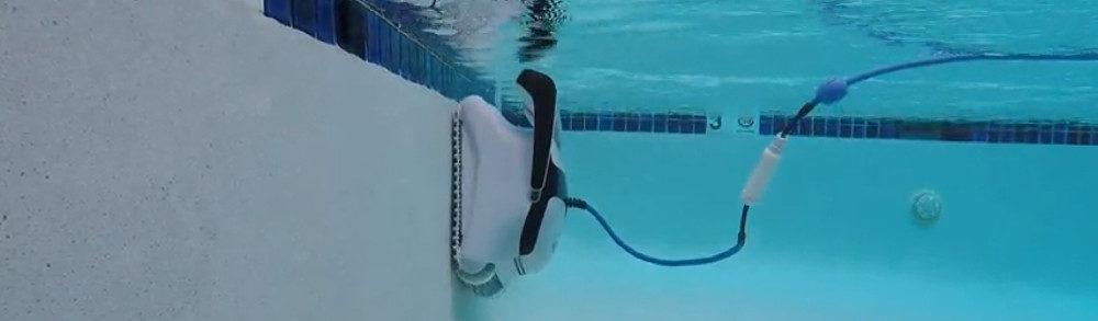 Dolphin C4