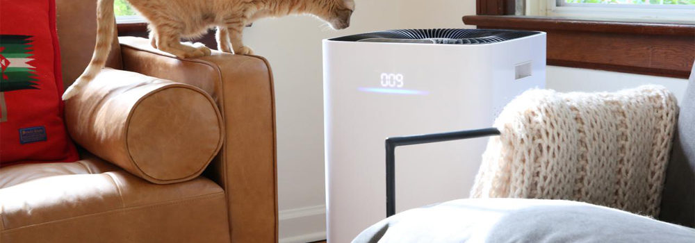 Medify Air Purifier with Filter