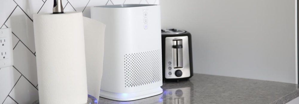 Purifier with Filter