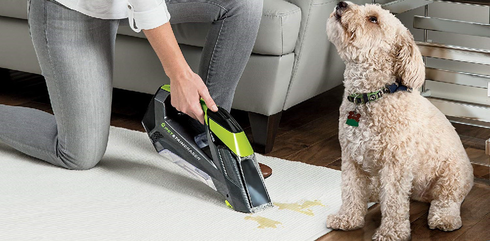 Carpet Cleaner for Pets