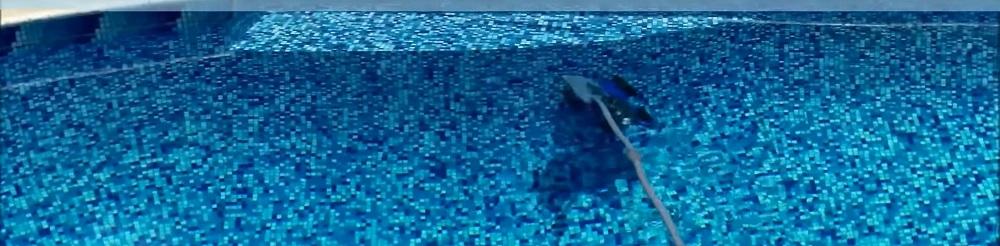 Pentair 360228 Pressure Pool Cleaner