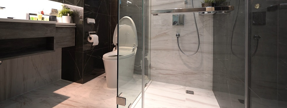 Are Electronic Bidet Toilet Seats Worth the Money?
