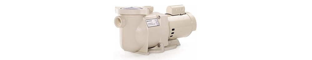 Pentair 340039 Pool Pump