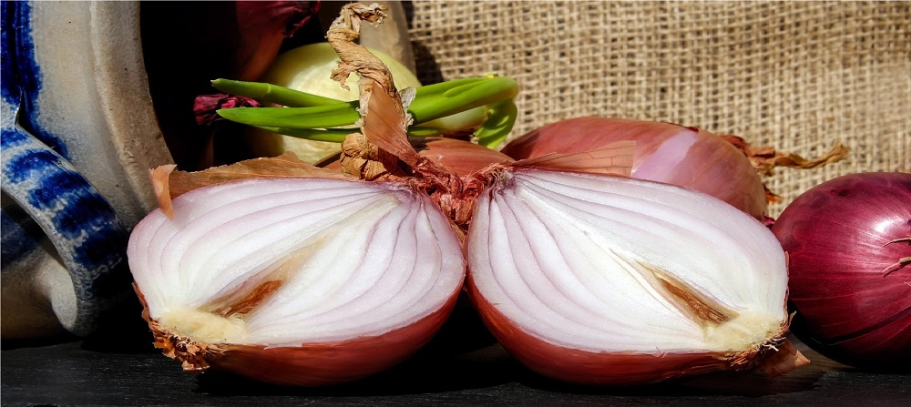 Antibacterial and antifungal activity of essential oils
