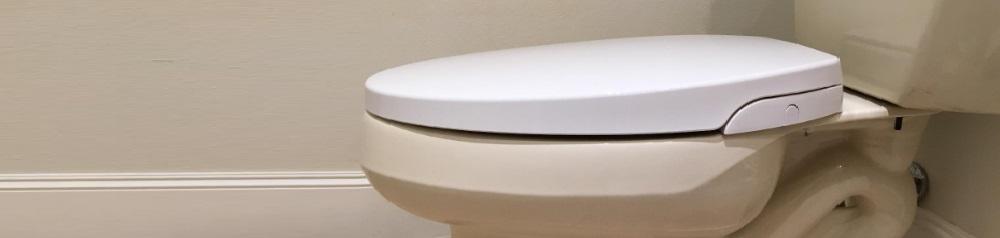 Genie Bidet Smart Toilet Seat Review