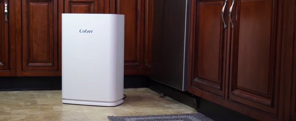 Colzer Air Purifier Review