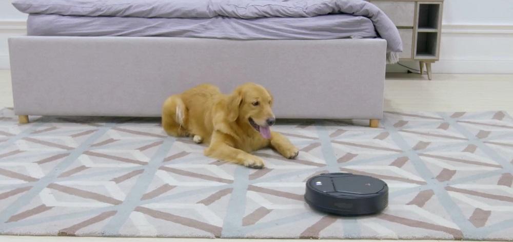 Lefant vs. Roomba Robot Vacuum